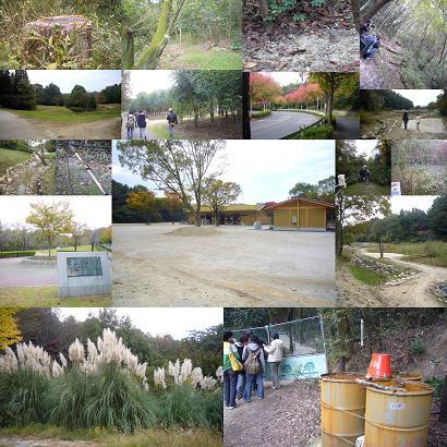 20101107.jpg