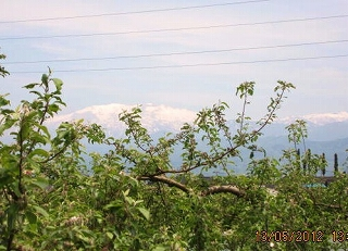 りんご園から薬師を遠望