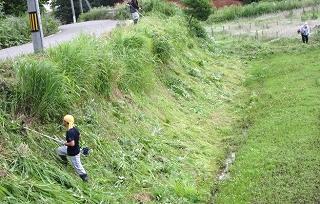 夏草刈り・採用