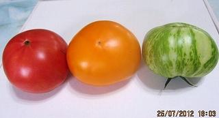 トマトの信号