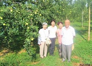 りんご園で照子親子と一緒に