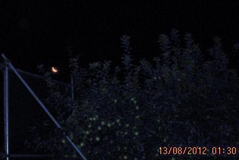 上弦の月・月齢24・9