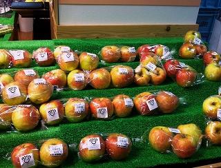 _店頭に並んだリンゴ