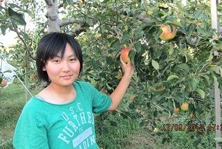 彩乃りんご狩り