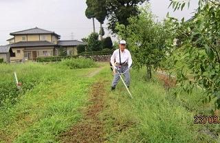 西農道草刈