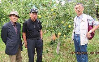 松永さん一行・りんご園で