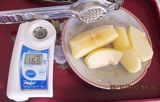 早生の糖度採用