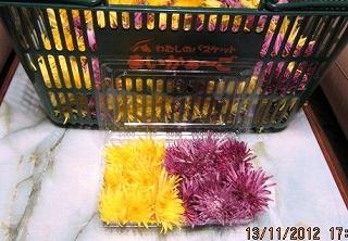 食用菊パッケージ