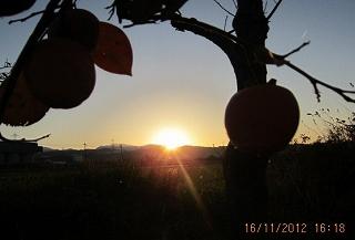 夕陽が沈む(11・16)