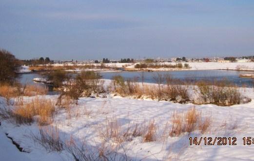 河岸の冬景色