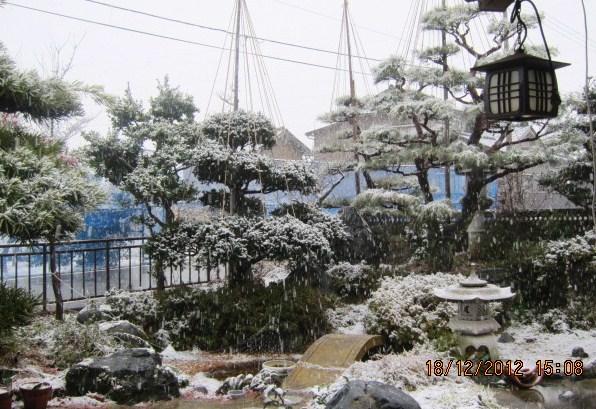予報どおりの雪