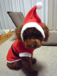 チョコクリスマス②