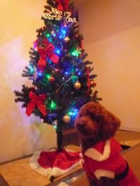 チョコクリスマス④