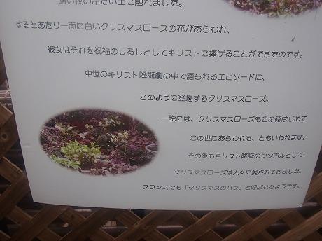 shukusho-RIMG0243.jpg