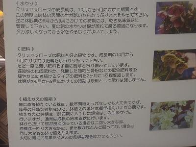 shukusho-RIMG0254.jpg