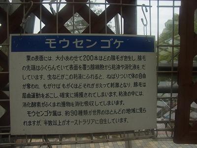 shukusho-RIMG0312.jpg