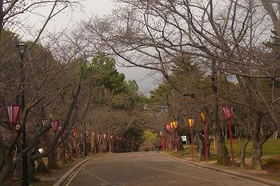shukusho-RIMG0399.jpg