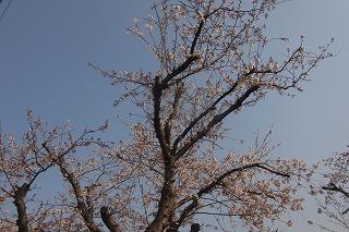 shukusho-RIMG0456.jpg