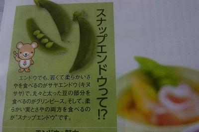 shukusho-RIMG0536.jpg