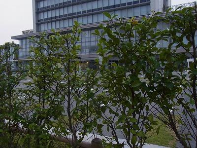 shukusho-RIMG0756.jpg