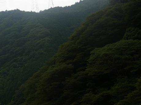 shukusho-RIMG0990.jpg