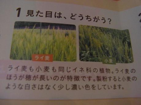 shukusho-RIMG1068.jpg
