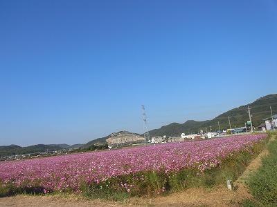 shukusho-RIMG1249.jpg