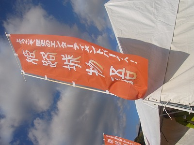 shukusho-RIMG1377.jpg