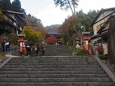 shukusho-RIMG1406.jpg