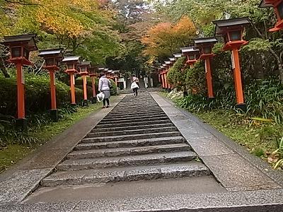 shukusho-RIMG1411.jpg