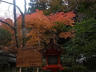shukusho-RIMG1420.jpg