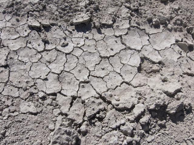 砂漠の地面