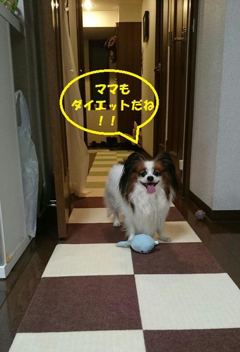 14102310.jpg