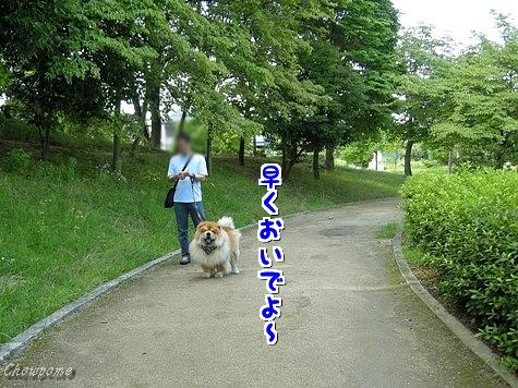 1-20100924.jpg