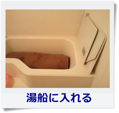 NEC_0003.jpg