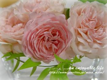 r_buf200506_pink.jpg