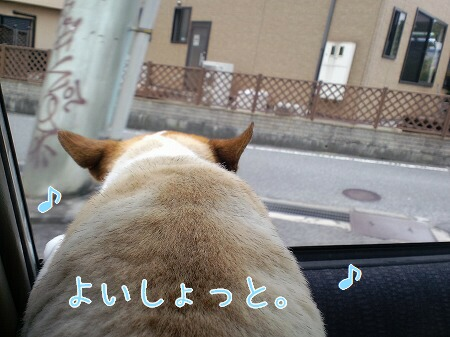 s-CA3C0714.jpg