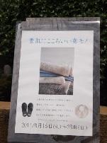 P8160100.jpg
