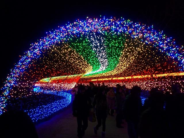 今年の出口は「虹」
