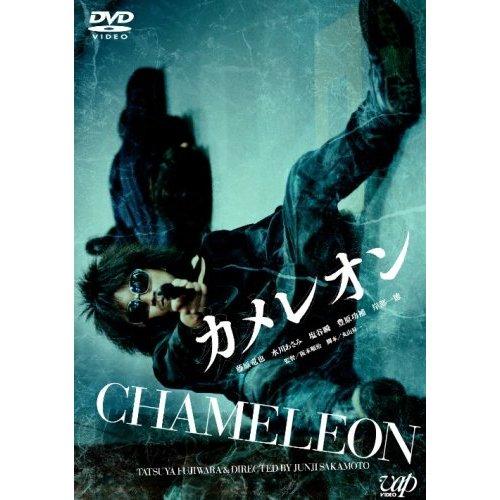 CHIMELEON.jpg