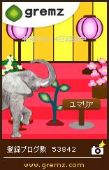 5_20110301_zou.jpg