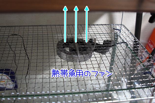20110709fan02.jpg
