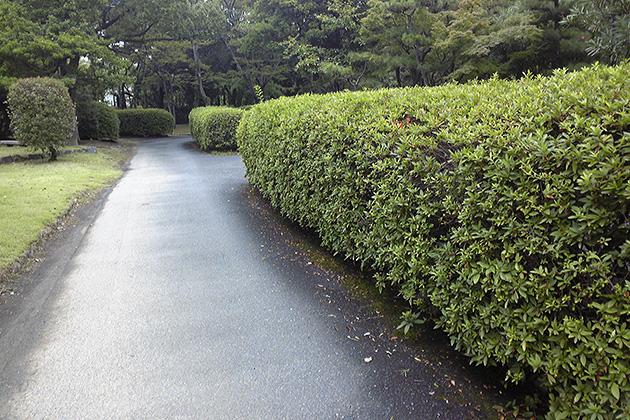 20110822hirosimajo.jpg