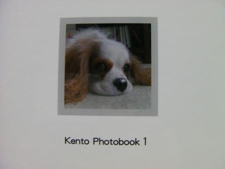 20101106_8.jpg