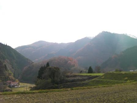 20101126_7.jpg