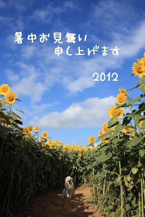 IMG_1208-2.jpg