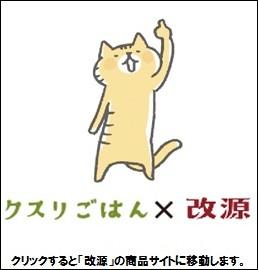 「クスリごはん」×「改源」のサイトへGO!