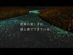 Kawaguchi-Cannon1003.jpg