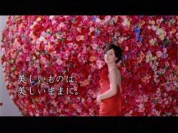 Takigawa-Diga1004.jpg