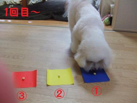 1番。青色。